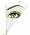eye brow shape 3