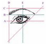 eye brow shape 2